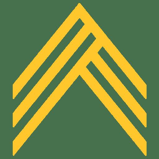 APN Athletics Arrow